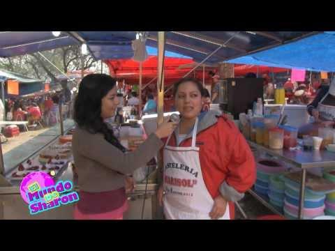 EL MUNDO DE SHARON EN ZACOALCO DE TORRES (EL CERRITO)