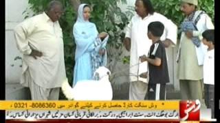 Pachiney Mehmani ( VSH NEWS ) EID Special Comedy Program Pachiney Mehmani Part 2 Of 3
