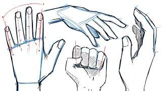 getlinkyoutube.com-How to Draw HANDS and HAND POSES!