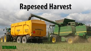 Stronga BulkLoada 660 agricultural trailer - High performance rapeseed harvest