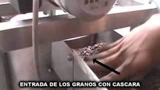 getlinkyoutube.com-Descascaradora de granos de Cacao, por Fischer Agro