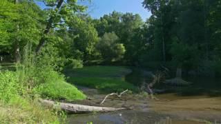 Landscape Scene. Free HD stock footage.