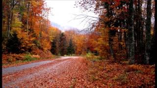 getlinkyoutube.com-Ο Πάριος τραγουδάει Τσιτσάνη ....  HD