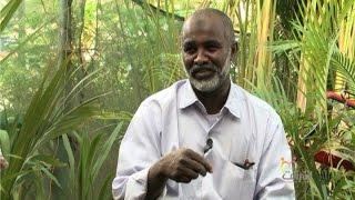 getlinkyoutube.com-استخدام النباتات في الديكور - موضة وجمال - أشرقت - قناة النيل الازرق