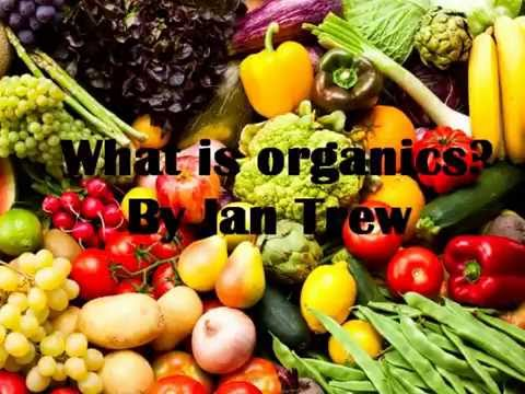 What is Organic?  Ian Trew  Noosa Forest Retreat Sunshine Coast Permaculture Course Queensland  PDC