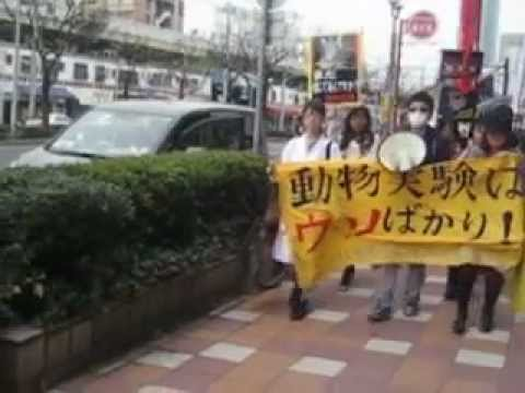 神戸動物実験反対デモ2013.3.17 Vol.1  Anti-Vivisection demo in Japan