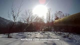 getlinkyoutube.com-Bol Aksiyonlu Bir  Domuz Avı 2015 Wild Boar Hunting