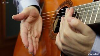 getlinkyoutube.com-Guitar 204: Basic Chords Hitting - اول طريقة لعزف الكوردات - بالعربية (Dr. ANTF)