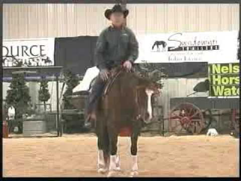 Best Start for the Unbroke Horse Series: Simplifying Cues - Legs and Reins