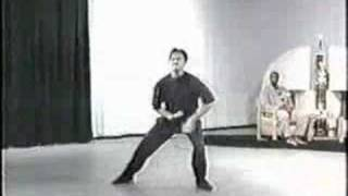 getlinkyoutube.com-Leopard Kung-Fu Form