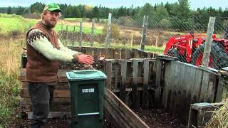 getlinkyoutube.com-Food Scraps for Chicken Feed