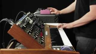 Strymon DIG - Dual Digital Delay Synth Demo with Peter Dyer