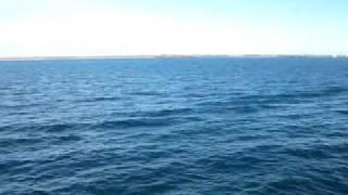 getlinkyoutube.com-Strange Wave Behaviour