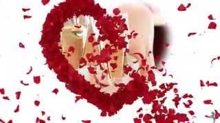 getlinkyoutube.com-Roses Wedding - Proshow STYLEPACK