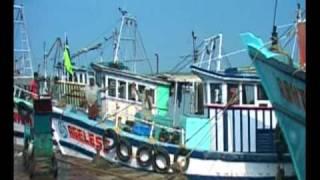 Intersting video of Fishing in Kerala, India