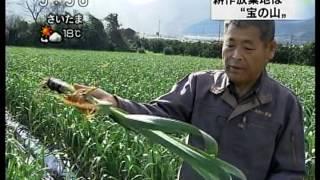 getlinkyoutube.com-kousakuhoukichi-ninnniku.mpg