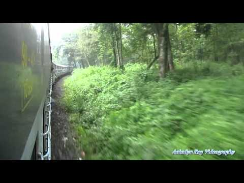 Indian Railway journey through Mahananda Wild Life Sanctuary