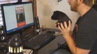 getlinkyoutube.com-Things to do with Guinea Pigs