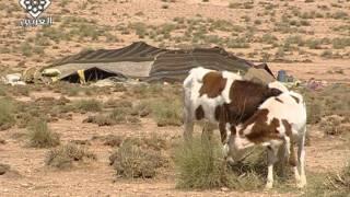 getlinkyoutube.com-حياة البدو فى الصحراء المغربية-2
