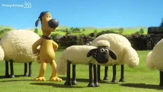 getlinkyoutube.com-shaun the sheep championsheeps 10 episodes