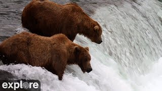 Brooks Falls - Katmai National Park, Alaska powered by EXPLORE.org width=