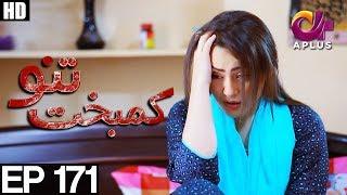 Kambakht Tanno - Episode 171 | A Plus ᴴᴰ Drama | Shabbir Jaan, Tanvir Jamal, Sadaf Ashaan