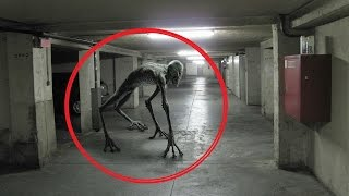 Worlds Scariest Creatures Caught On Tape 2016