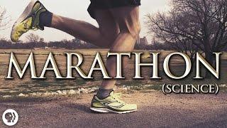getlinkyoutube.com-The Science of Marathon Running