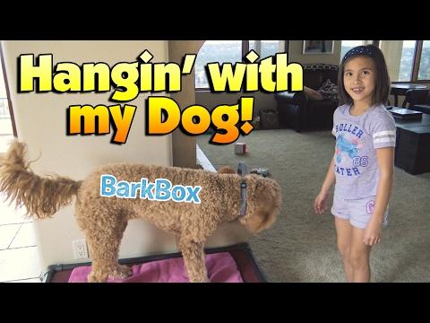 HANGIN' with MY DOG!!! Doggy Salon & BarkBox Treat Time!