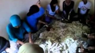 Proses Pembuatan Tepung Mocaf dari Singkong