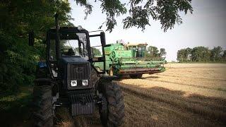 getlinkyoutube.com-Уборка пшеницы 2015! Пашем на МТЗ-1221.2. \ Wheat harvest in 2015! Plow on MTZ 1221.2.