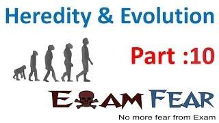 Biology Heredity & evolution part 10 (How traits get expressed, sex determination) CBSE class 10 X