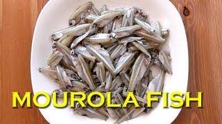 getlinkyoutube.com-MOUROLA MAACHER JHOL - Mola Fish Curry