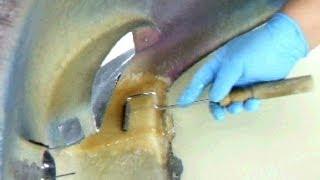 getlinkyoutube.com-How to Repair Fiberglass / Your Car Bumper / FRP バンパーの修理方法