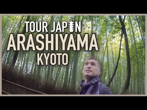 Kyoto's Bamboo Forest & More: Guide to the Arashiyama District