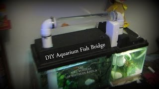 getlinkyoutube.com-DIY Aquarium Fish Bridge