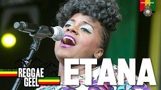 getlinkyoutube.com-Etana Live at Reggae Geel 2015
