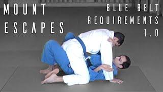 getlinkyoutube.com-Brazilian Jiu Jitsu | Mount Escapes | Blue Belt Requirements | ROYDEAN.TV