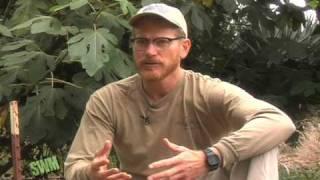 Rainwater Harvesting Basics (1) Brad Lancaster