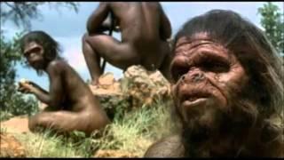 getlinkyoutube.com-A evolução do homem