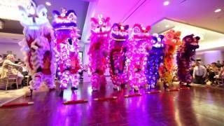 Yau Kung Moon USA - LED Wedding Lion Dance
