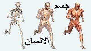 getlinkyoutube.com-على مادا يحتوي جسم الإنسان؟