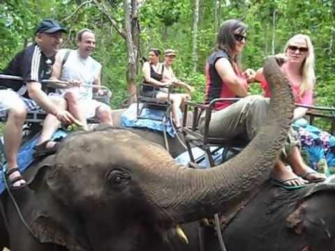 Chiang Mai - Safari en Elefantes  por la selva tailandesa 2012