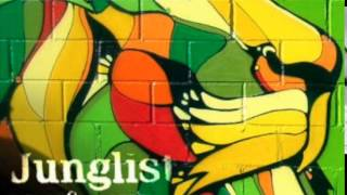 getlinkyoutube.com-Babylon Ragga Jungle Mix