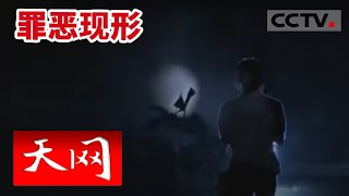 getlinkyoutube.com-现形【天网  20150825】