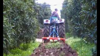 getlinkyoutube.com-Dissodatura frutteto 40 cm con LANDINI REX 80  dopo la raccolta. DISSODATORE NPM