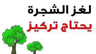 getlinkyoutube.com-لغز الشجرة يحتاج الى تركيز مع الحل