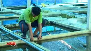 getlinkyoutube.com-การเลี้ยงปลากัด By NongBetta ตอนที่ 2
