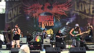 "Katchafire ""Collie Herb Man"" live at Reggae on he River 2015"