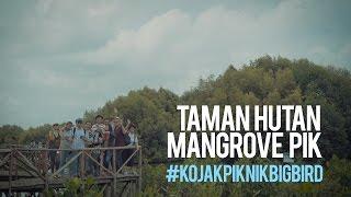 Piknik ke Taman Hutan Mangrove PIK #KoJakPiknikBigBird